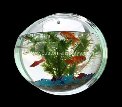 Wall mounted fish tank